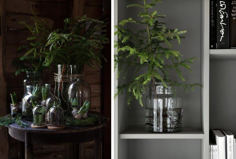 un semplice ma elegante mix di rami di pino, abete e bulbi