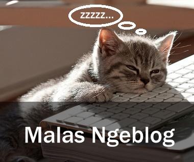 Siapa yang belum pernah malas ngeblog? Apa saja hal-hal yang bikin malas ngeblog? Berikut ini tips supaya tidak malas ngeblog.