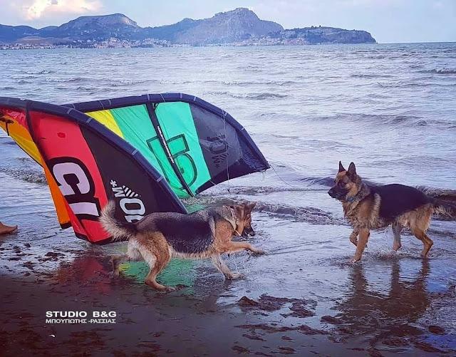 Η φωτογραφία της ημέρας:  Παίζοντας στα κύματα