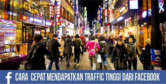 Traffic Organik