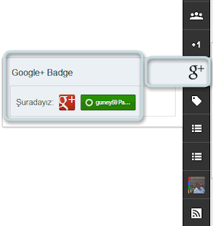 Google Badge Rozeti