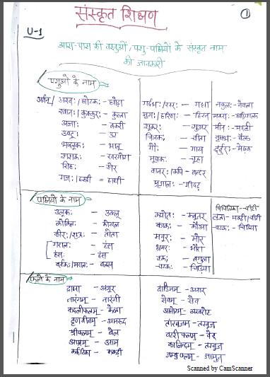SANSKRIT Teaching  HandWriteen Notes : For All Teachers Exam Hindi PDF Book