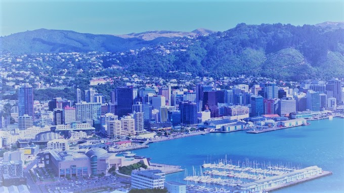 New Zealand Wants To Raise Their Tech Game, and They May Just Pull It Off...