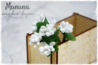http://manuna.pl/produkt/preciki-mieszane-biale-00