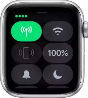 Arti Icon dan Simbol di Apple Watch-8