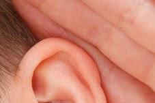 Laporan Praktikum Struktur dan Fungsi Telinga (Praktikum IPA di SD)
