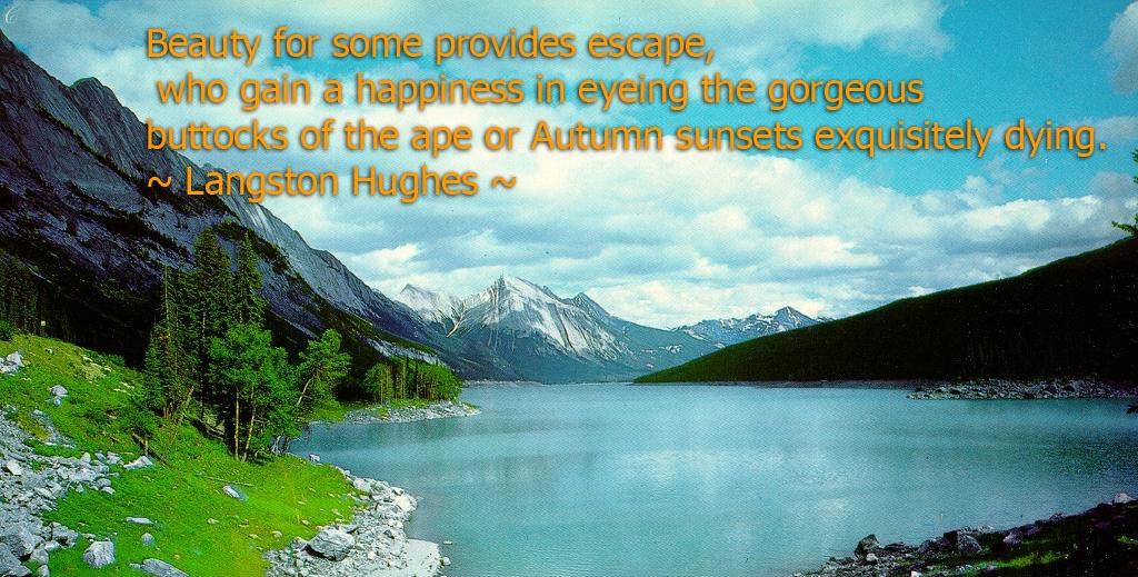 Albert Camus Quotes Wallpaper Nature Quotes And Sayings Apihyayan Blog