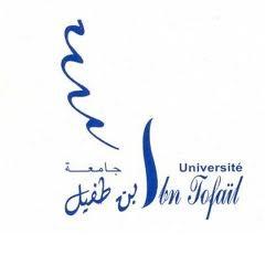 alwadifa-news-2018-maroc-emploi-job