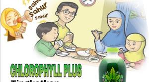 Sarapan Sehat 5
