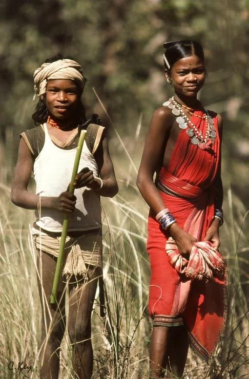 गोंड जनजाति, आबादी, निवास, प्रमुख राजा - Goand Janjati