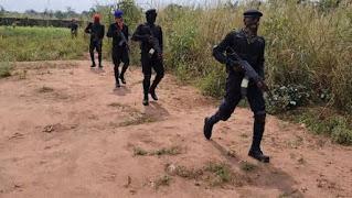 IPOB SOLDIERS CHASING FULANI HERDSMEN