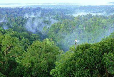Tempat Wisata Alam di Brunei Darussalam