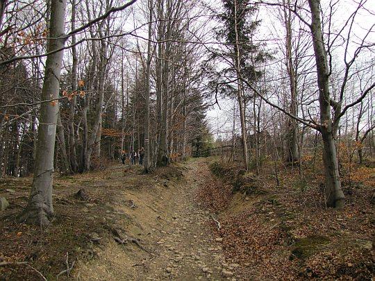 Zejście z Kudłączy