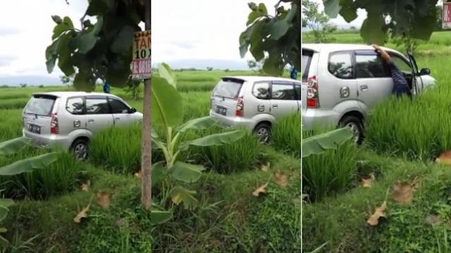 Viral video mobil masuk tengah sawah di Madiun tanpa bekas jejak ban