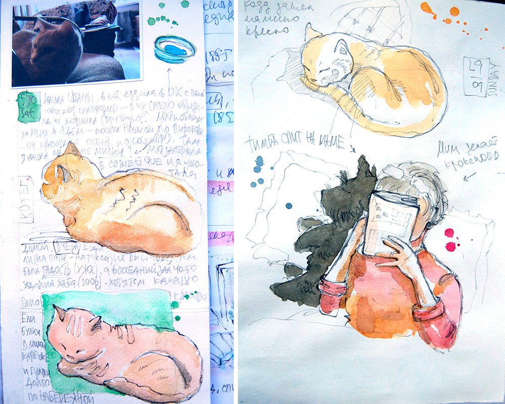 Cats dogs watercolor sketches