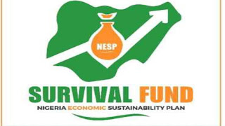 How to Apply FG N60Bn MSME Survival Fund