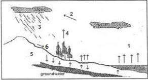 Mapel Geografi SMA MA dan kunci jawaban Contoh Soal UN (Ujian Nasional) SMA Geografi & Jawaban