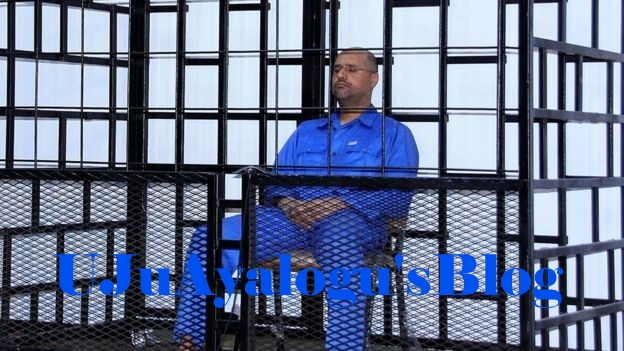 Gaddafi's son, Saif, freed in Libya, whereabouts unknown