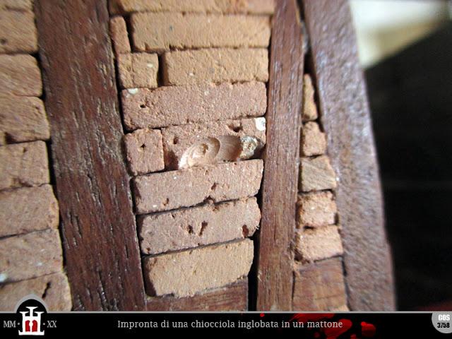 Impronta di una chiocciola inglobata in un mattone