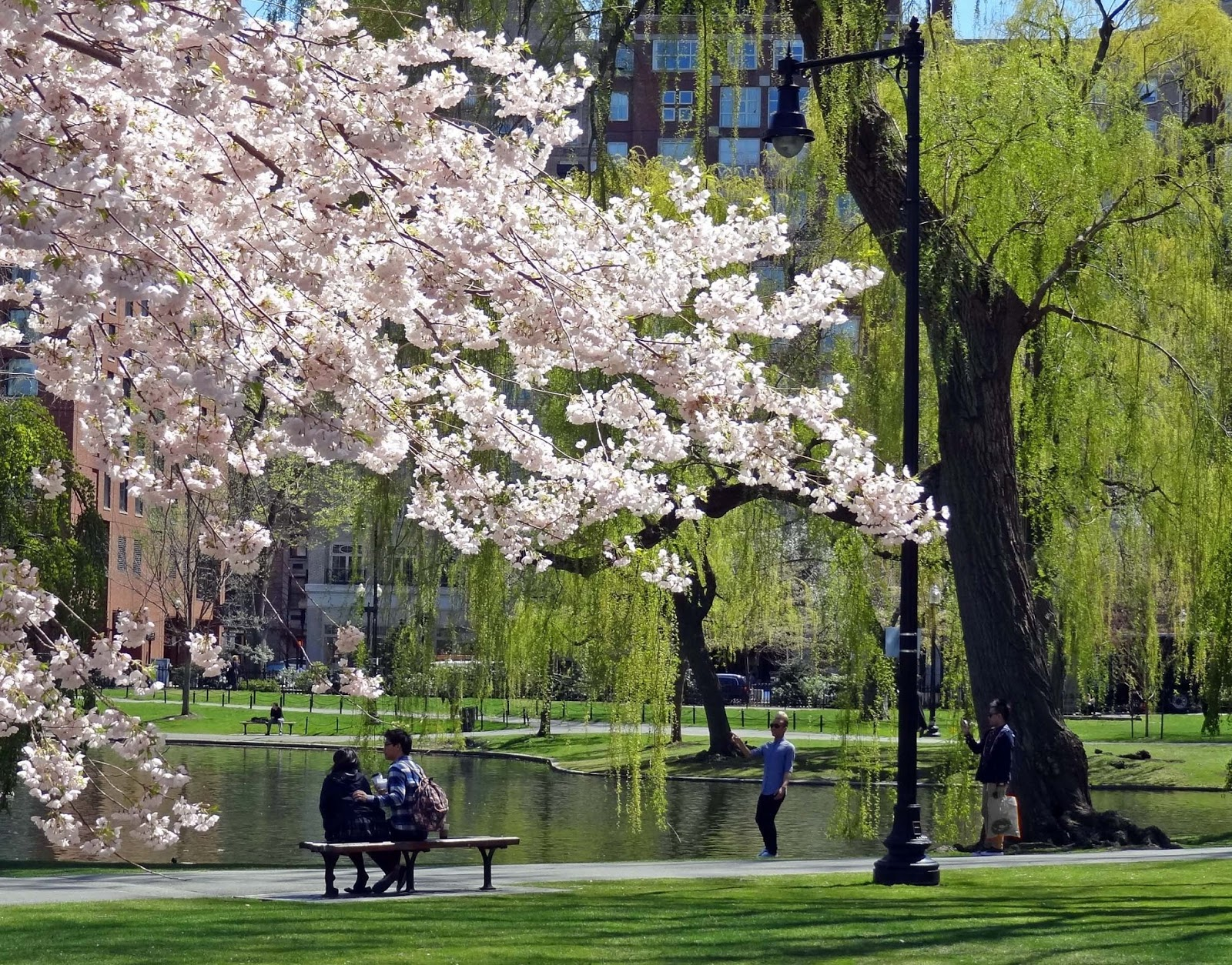 Joe S Retirement Blog Spring Boston Massachusetts Usa