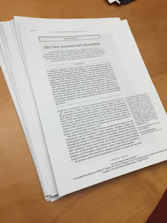 Short stack of scientific papers