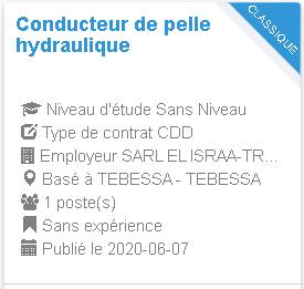 Conducteur de pelle hydraulique TEBESSA