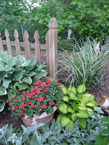 Hostas, impatiens and ornamental grass