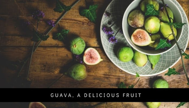 Guava, a delicious fruit
