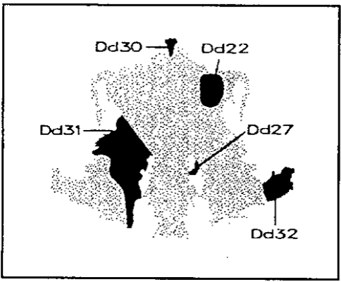 HerramientasPsi: Test de Rorschach: Localización y calidad
