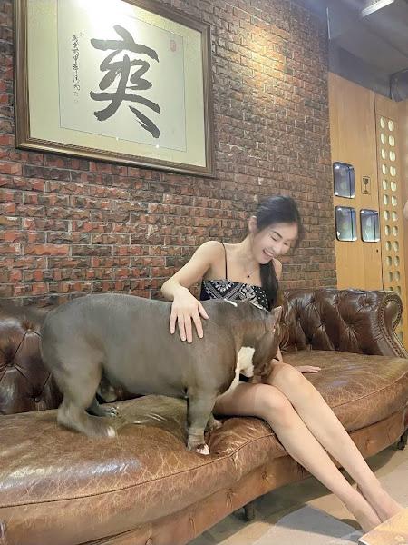 瑜伽女神夏米雅秀螞蟻腰 遭惡霸犬舔濕自嘲找到藍海市場