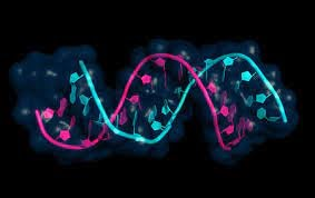 Rapid growth in the various clinical research programs are augmenting the demand for transcriptomics technologies
