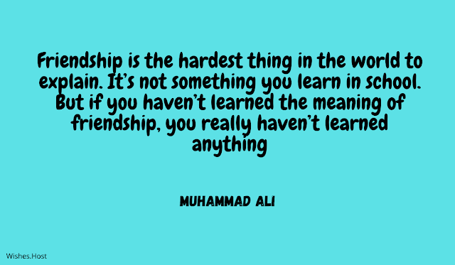 Friendship Quotes And Sayings