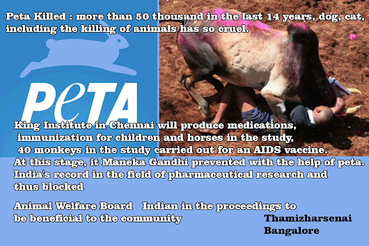 peta killed 50 thousand in the last 14 years, dog, cat, including the killing of animals has so cruel.