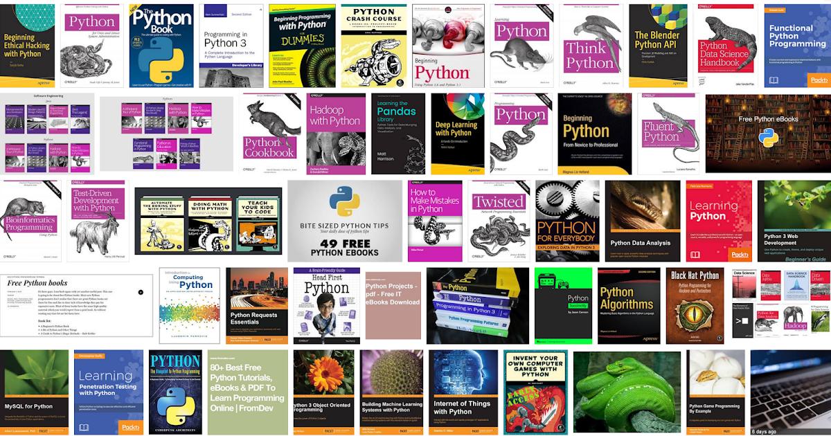 Black Hat Python Ebook