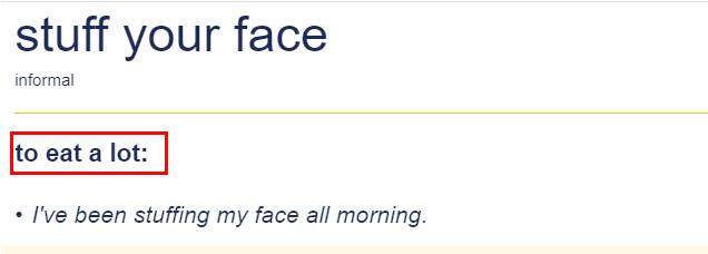 Penjelasan Stuff Your Face
