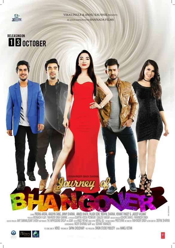 Journey Of Bhangover (2017) Hindi 300MB HDTV 480p x264