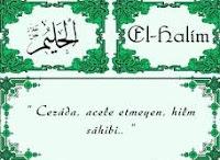 El-Halim İsminin Ebced Sayısıyla Aynı Olan Kur'an Suresi ve Ayetleri