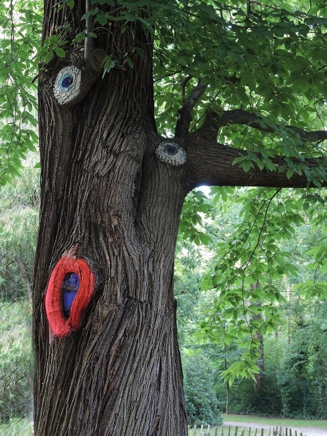 Antwerpen:  babbelende bomen in Boekenbergpark