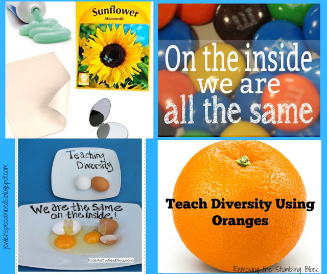 Activities for Diversity and Disability Inclusion; Removing the Stumbling Block