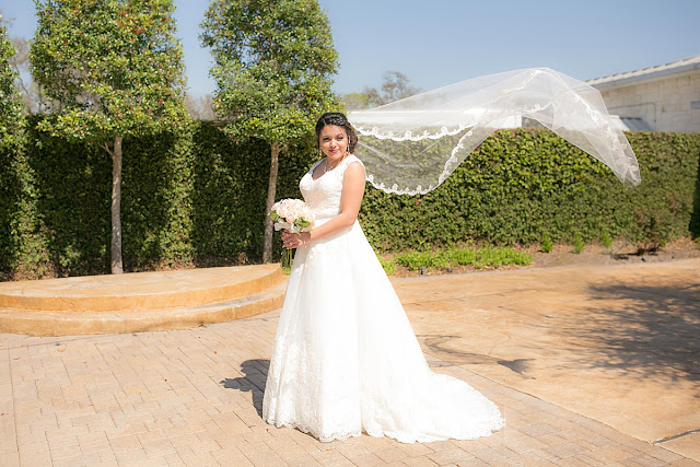 Briscoe Manor Houston Wedding Venue, Lace Scalloped Wedding Dress, Long Veil