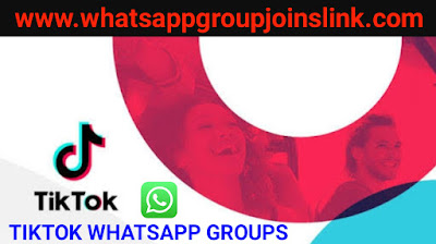 TikTok Videos Sharing Whatsapp Groups 2019 Full Active TikTok Whatsapp Group Joins Link