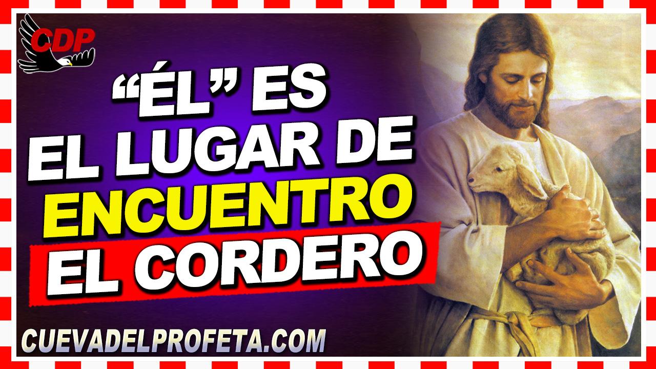 """""""Él"""" es el lugar de encuentro, el Cordero - William Branham en Español"""