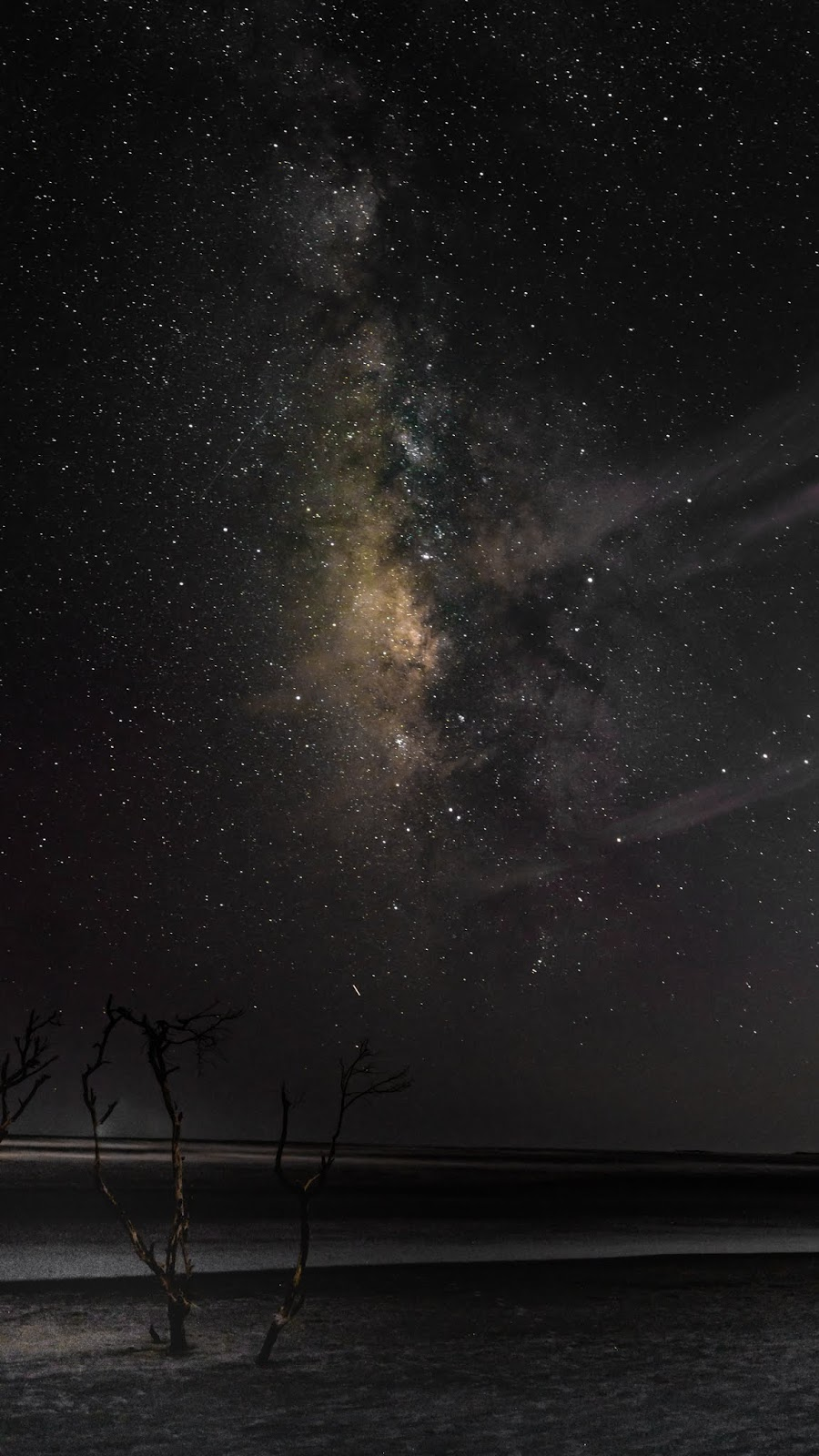 Beach in the starry night