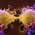 Sejarah Asal Usul Kemoterapi Sebagai Pengobatan Kanker