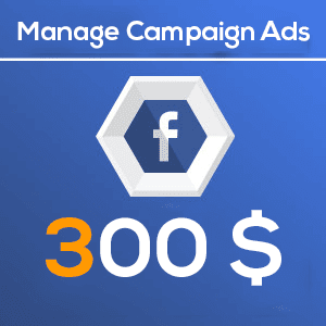 300 Manage Facebook Campaign Ads