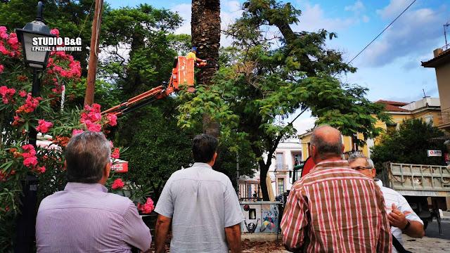 Εκτεταμένες εργασίες καλλωπισμού στο Πάρκο Κολοκοτρώνη στο Ναύπλιο