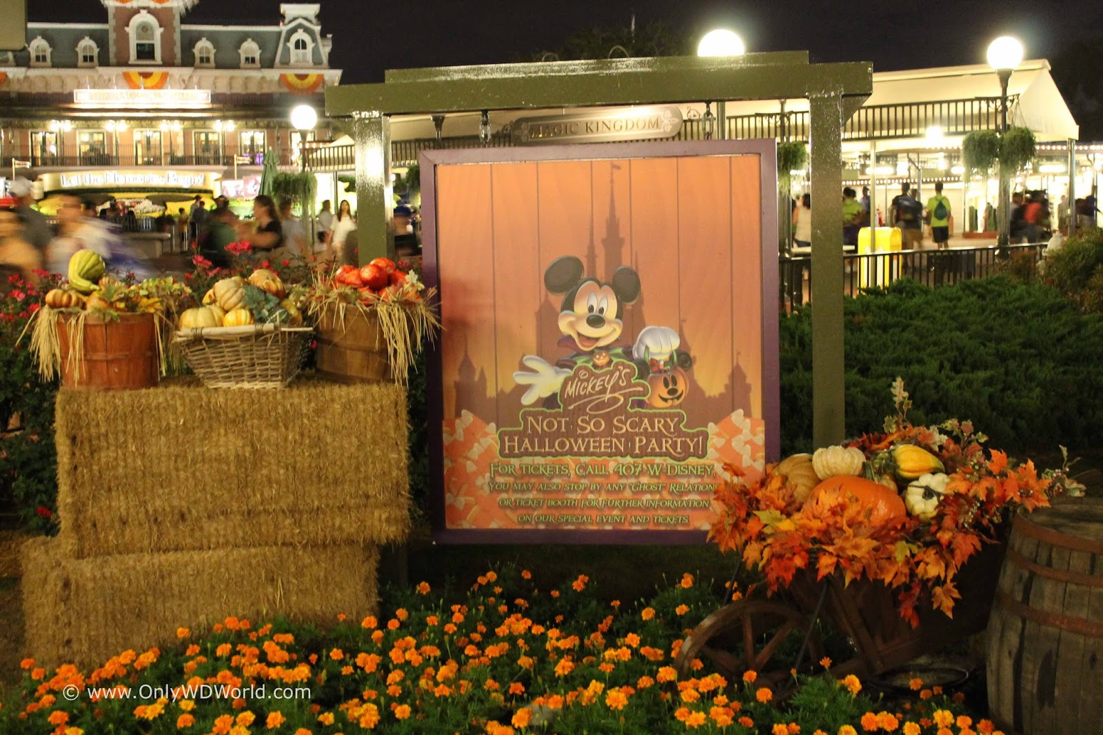 2016 Mickey's Not So Scary Halloween Party Dates Announced ...