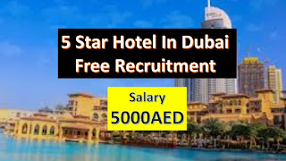 hotel jobs in dubai, hotel management jobs in dubai, hotel jobs in dubai with salary, hotel jobs in dubai salary, hotel jobs in dubai for Indian, hotel jobs in dubai for freshers, hotel job vacancy in dubai, online apply for hotel jobs in dubai, 5 star hotel jobs in dubai, hotel management jobs in dubai salary, hotel management jobs in dubai for freshers,