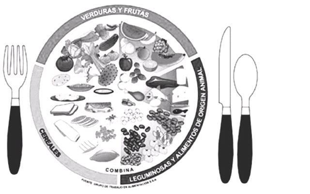 Imagenes del plato alimenticio para colorear
