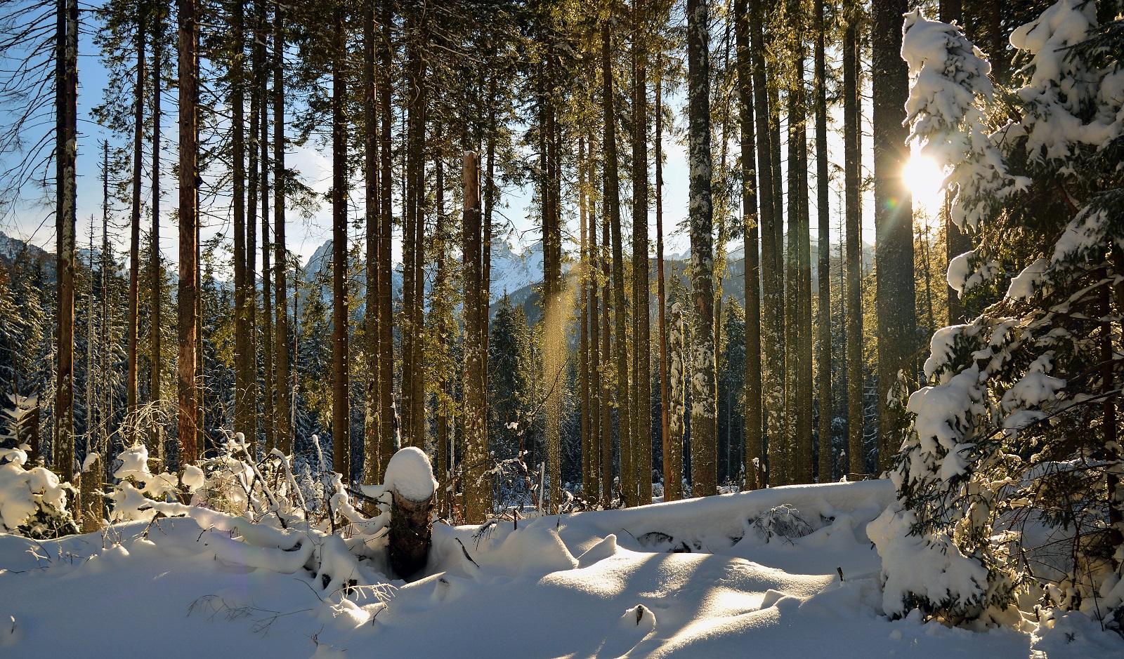 Ciepło w górach - Co robić, by nie trząść się z zimna?